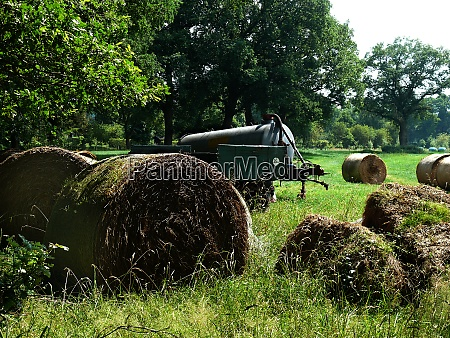 straw bales in worpswede