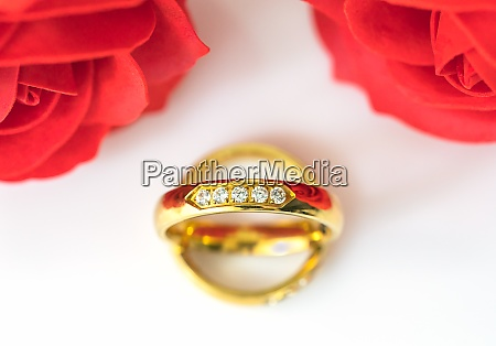 red roses and gold rings on