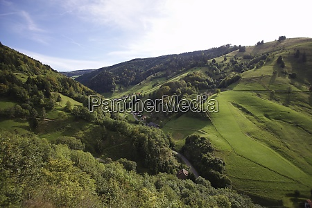 landscape near wieden in the southern