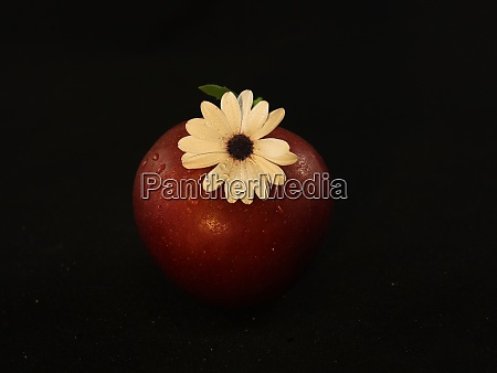 red apple aroma flower quality delicious