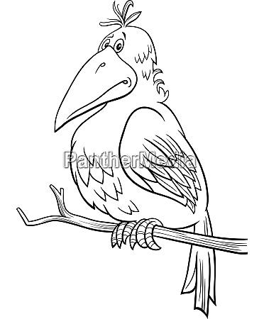 cartoon fantasy bird comic character coloring
