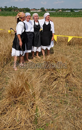 the harvest traditionally begins assembling villagers