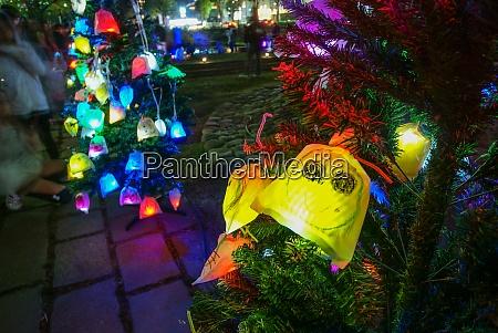 tree glowing in colorful illumination