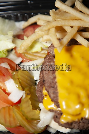 gluten free burger and fries