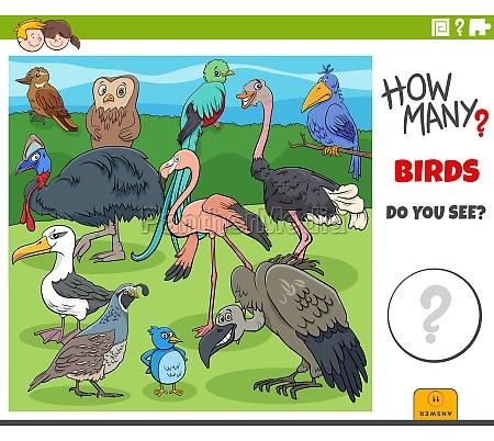 how many birds educational cartoon game