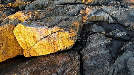 rocky landscape texture