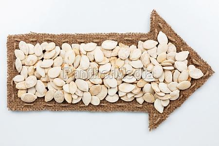 pointer with pumpkin seeds