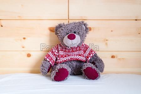 teddy dream concept teddy bear is