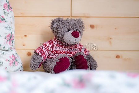 teddy dream concept teddy bear is