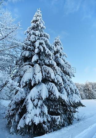 white winter landscape in the rhoen