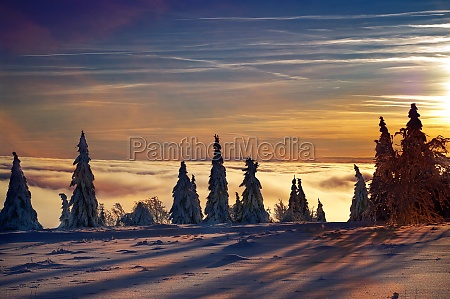 kahler asten mountain with snowy spruces