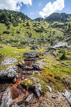 streamlet in idyllic mountain landscape
