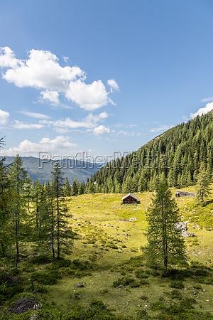 idyllic mountain landscape in the alps