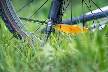mountain bike tires in the meadow