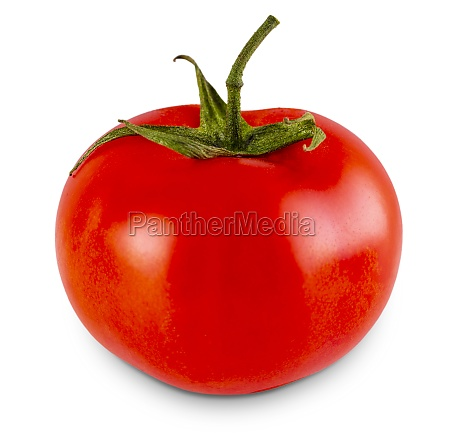 the fresh red tomato isolated on