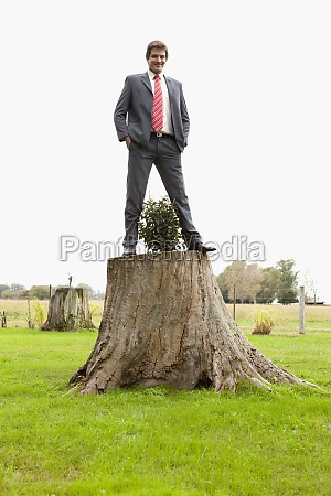 businessman standing on a tree stump