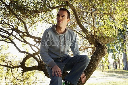 man sitting on a tree in
