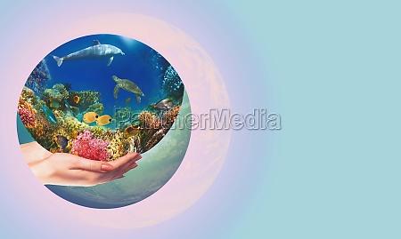 globe in human hand against blue