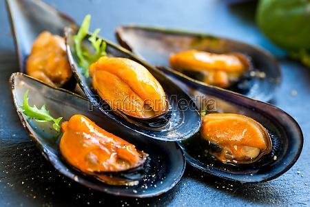 fresh steamed sea mussels