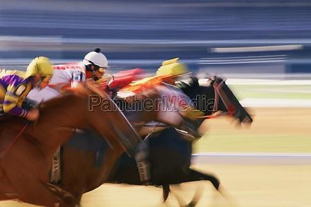 three jockeys riding their horses on