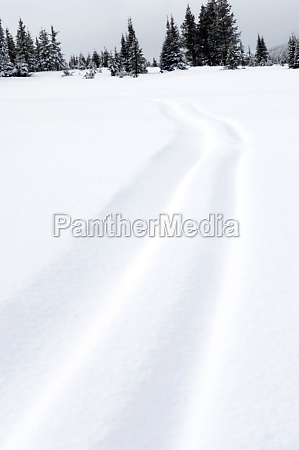 tire track in snow west yellowstone