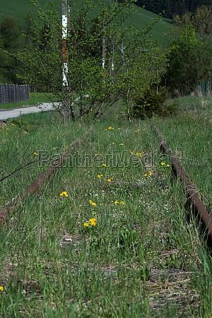 abandoned railroad line and rails