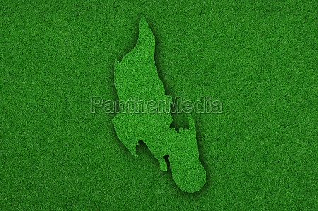 map of zanzibar on green felt