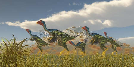 caudipteryx dinosaur flock