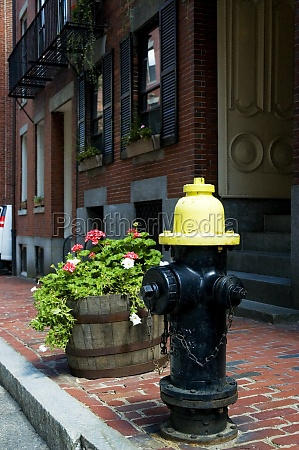 fire hydrant on a street boston