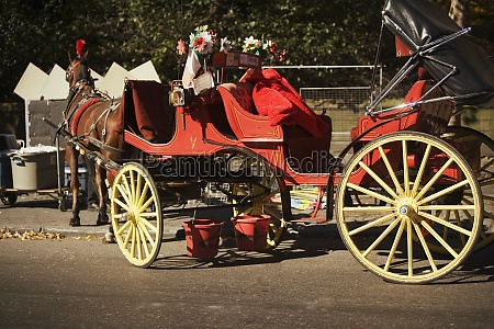 close up of a horse drawn