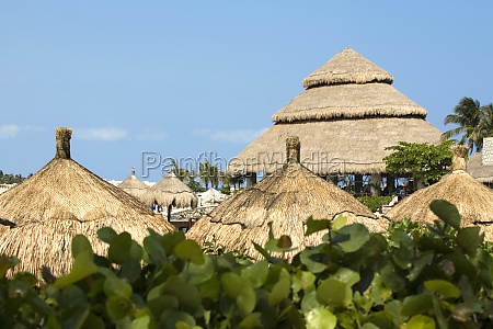 high section view of thatched roofs