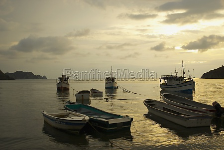 boats anchored at the port taganga
