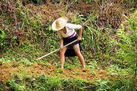mature woman digging a field jinkeng