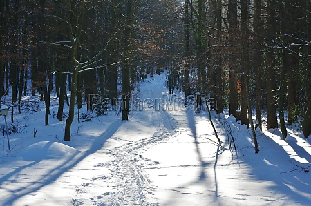 winter in bielefeld eastwestphalia lippe north
