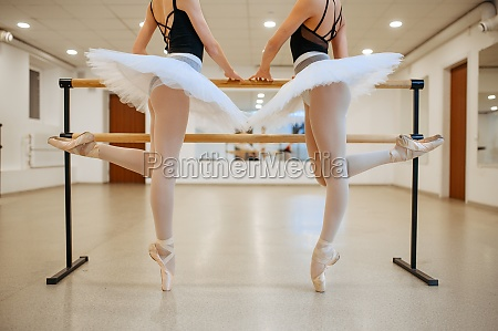 elegant ballerinas exercise at the barre