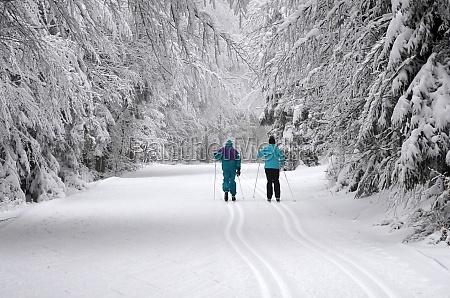 langlaufen im boehmerwald oberoesterreich OEsterreich