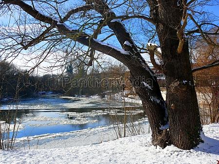 winter old oak und leine river