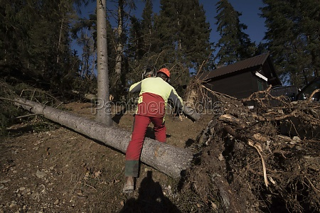 cleanup after storm damage in the