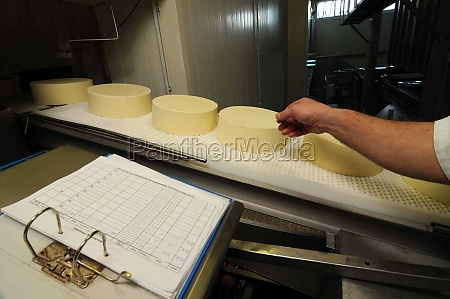 cheese making in industrial food production