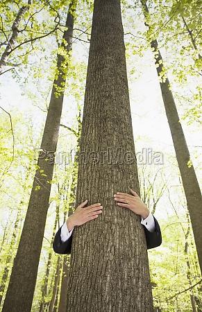 man in suit hugging tree