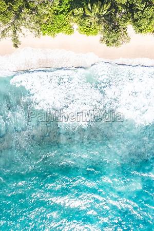 seychelles takamaka beach mahe mahe portrait