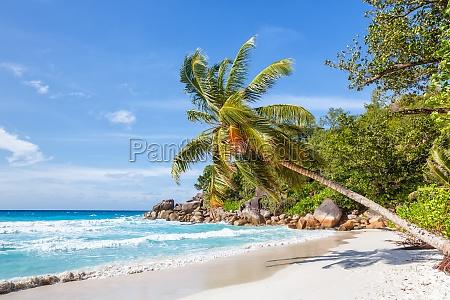 seychelles anse georgette beach praslin island
