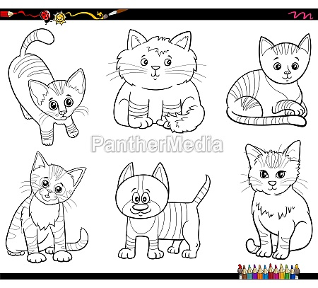 cartoon cats animal characters set coloring