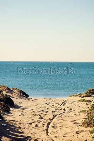 coastal landscape with thin beach and
