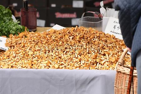 wochenmarkt in gmunden oberoesterreich OEsterreich europa