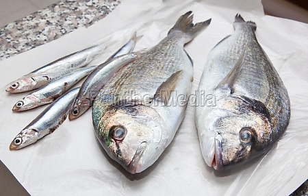 anchovies and sea bream for sale
