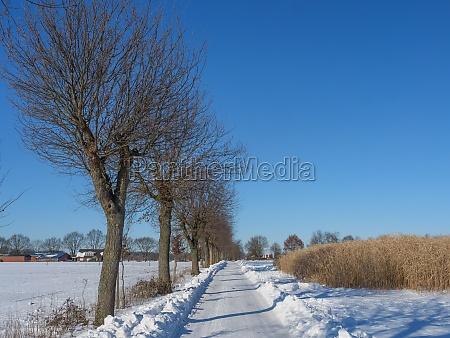 winter time in westphalia