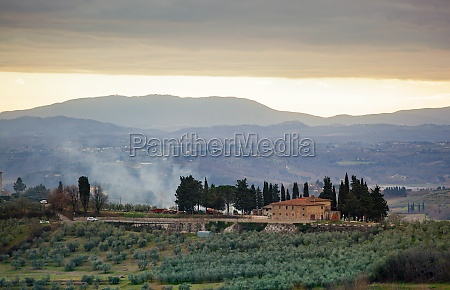 tuscan landscape with cypress trees and