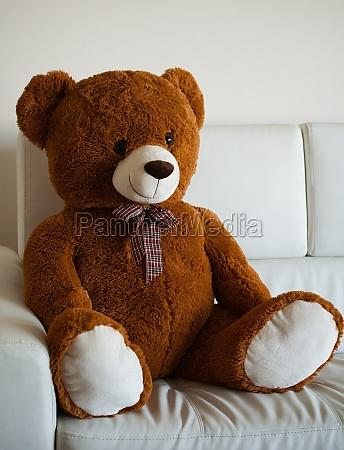 lovely teddy bear sitting on a