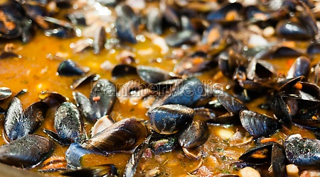cooking mussel soup